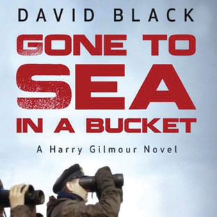 85. (January 2020) Gone to Sea in a Bucket by David Black